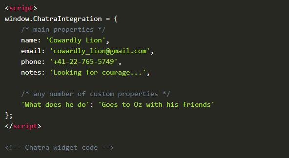 Custom Data sent to Chatra via JavaScript API